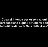 Interviste/SANSONETTI_1
