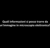 Interviste/SANSONETTI_2