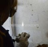 6.2 2017.02.27 Penati_Anna Brunetto pulitura laser DSC_0628_1